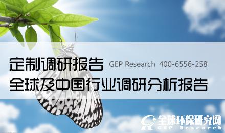 定制调研报告——全球及中国行业调研分析报告