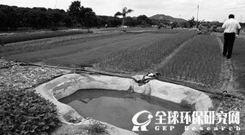 中科院生态环境中心黄锦楼:分类管理恢复土地生态功能